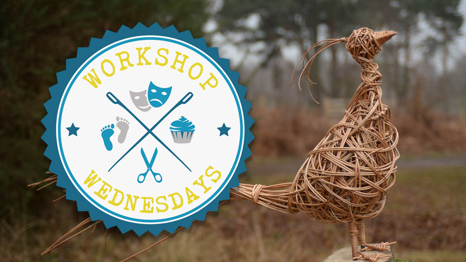 Workshop Wednesdays Willow Weaving